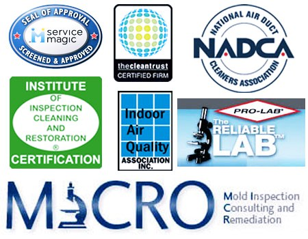 asbestos mold certification